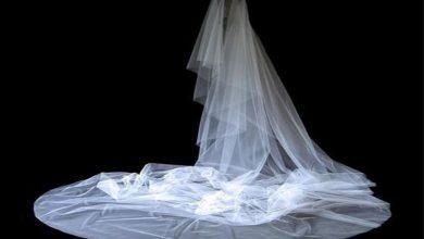 Photo of پایان زندگی عروس و داماد پای چوبه دار