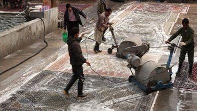 Photo of مردم برای انتخاب قالیشویی مورد نظرشان با اتحادیه هماهنگ باشند