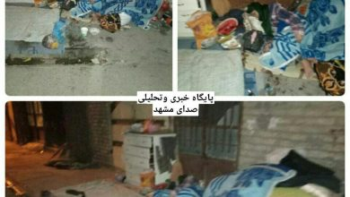 Photo of خانواده بیپناه اسکان یافتند