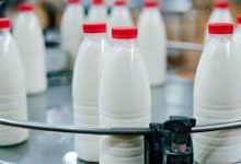 Photo of جهش تولید لبنیات با هدفگذاری افزایش تولید شیر در خراسان رضوی