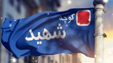 "Photo of یکی از خیابانهای مشهد به نام ""شهدای فاطمیون"" مزین شد"