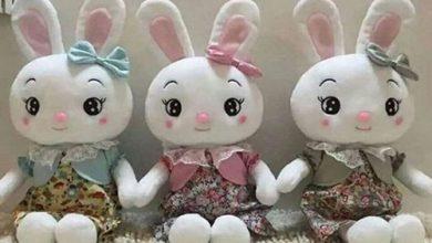 تصویر از اولین جشنواره عروسک سازی در مشهد برگزار می شود